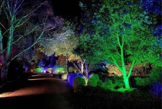 Connaught Gardens Christmas Event