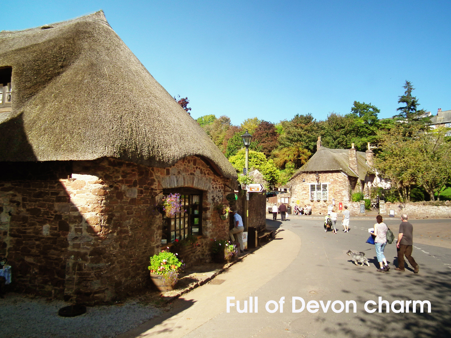 Cockington thatched cottages in October